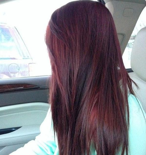 Medium brown hair with burgundy highlights hairs picture gallery medium brown hair with burgundy highlights hd pictures pmusecretfo Choice Image